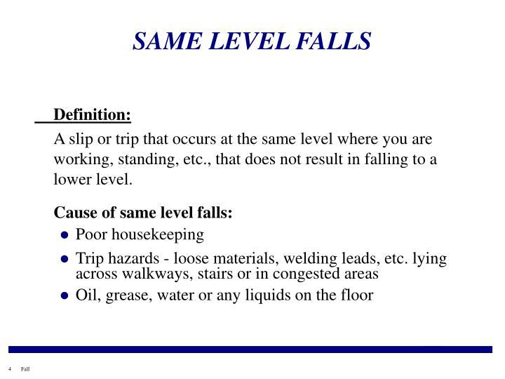 SAME LEVEL FALLS