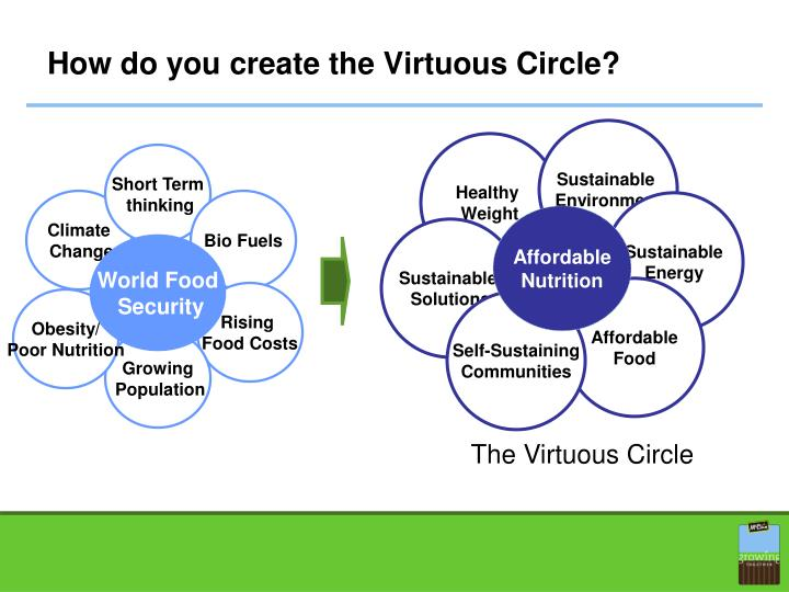 How do you create the Virtuous Circle?