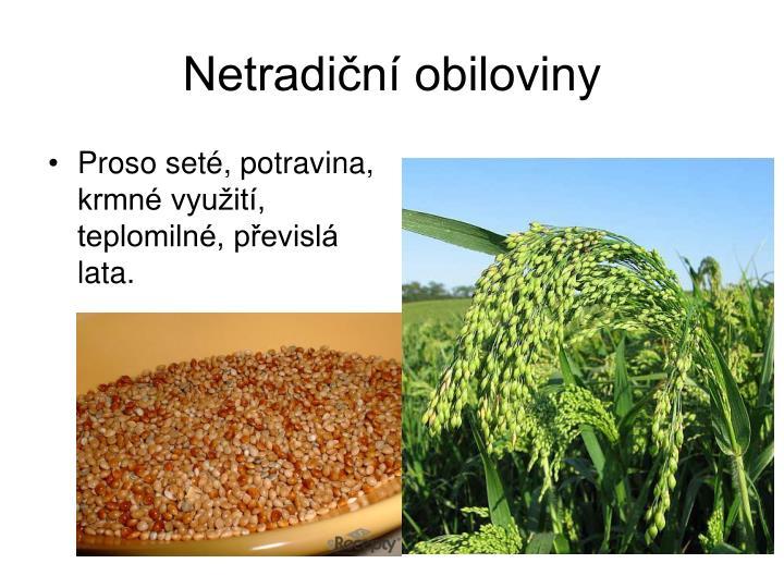 Netradiční obiloviny