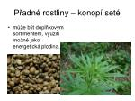 p adn rostliny konop set