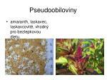 pseudoobiloviny1