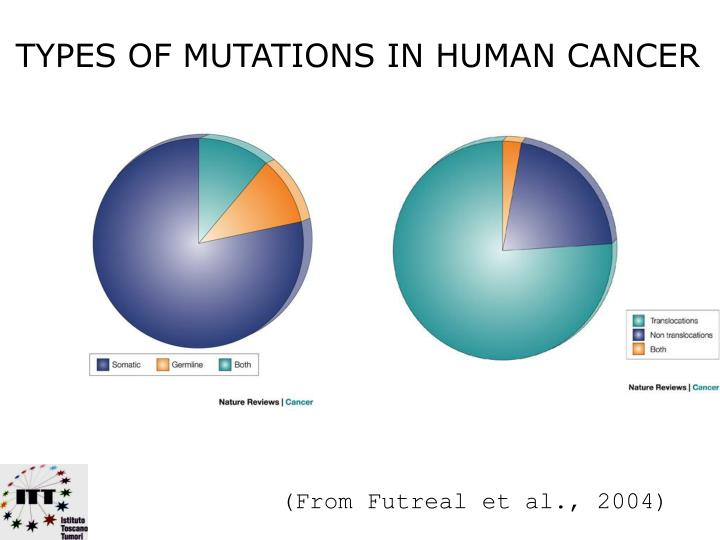 TYPES OF MUTATIONS IN HUMAN CANCER