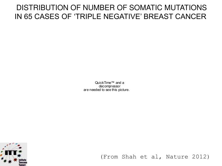DISTRIBUTION OF NUMBER OF SOMATIC MUTATIONS
