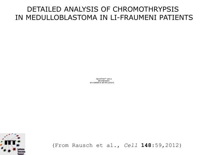 DETAILED ANALYSIS OF CHROMOTHRYPSIS