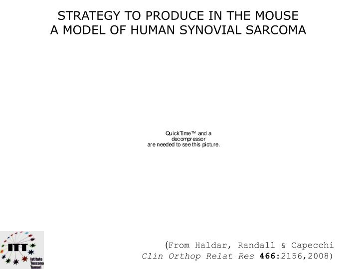 STRATEGY TO PRODUCE IN THE MOUSE