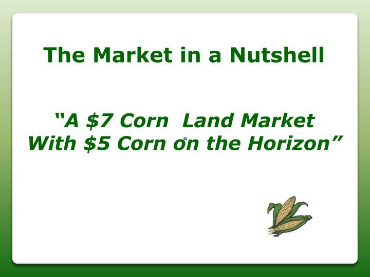 The Market in a Nutshell