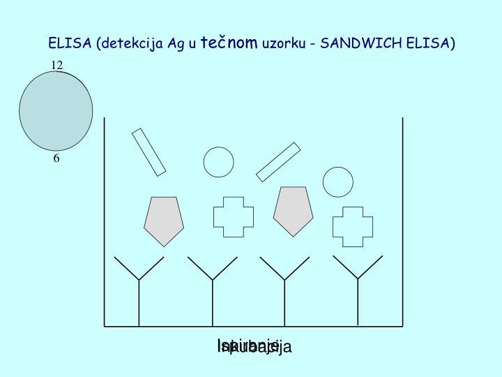 ELISA (detekcija Ag u