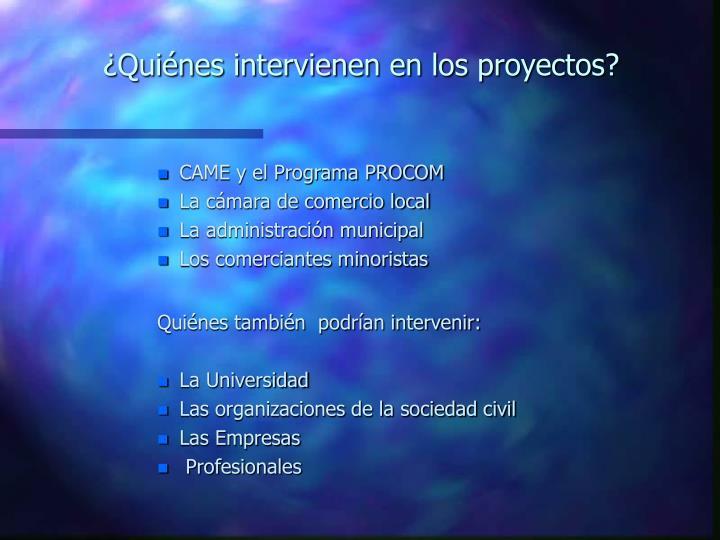 ¿Quiénes intervienen en los proyectos?