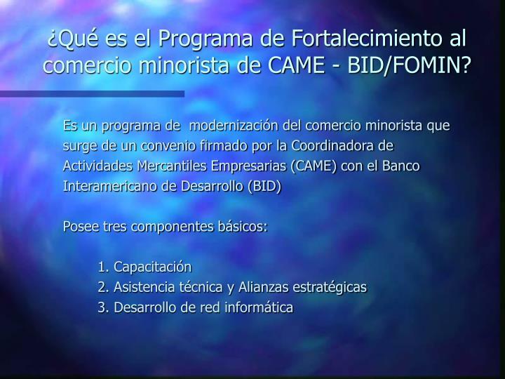 ¿Qué es el Programa de Fortalecimiento al comercio minorista de CAME - BID/FOMIN?