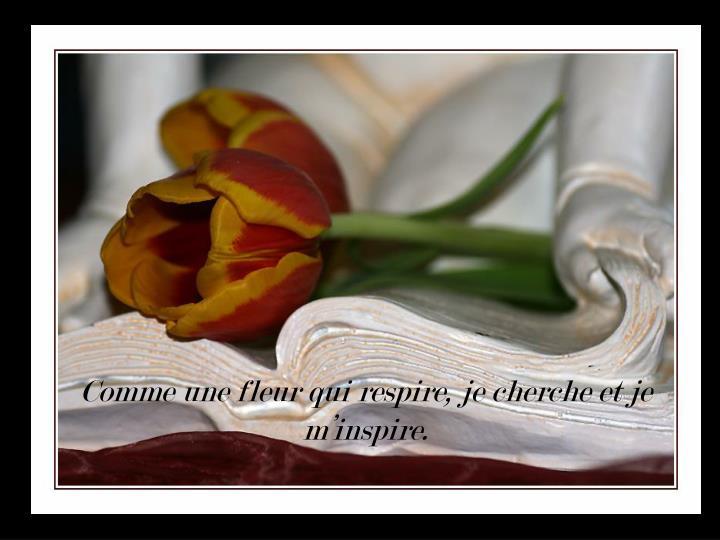 Comme une fleur qui respire, je cherche et je m'inspire.