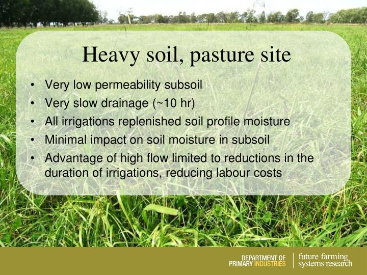 Heavy soil, pasture site