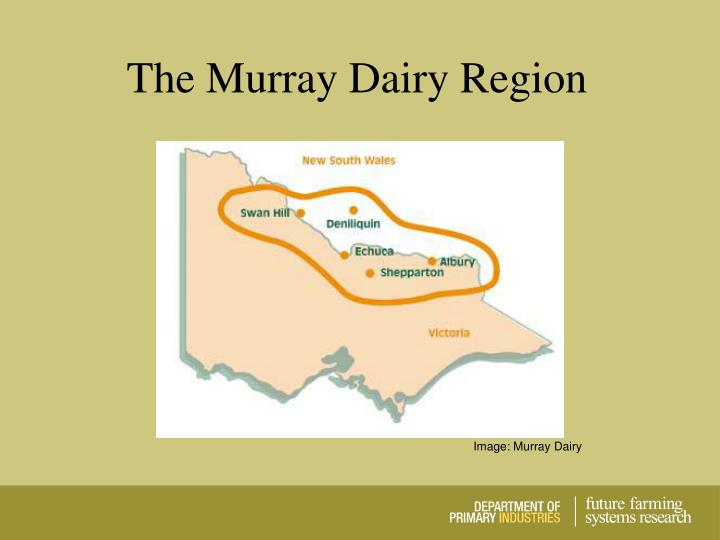 The Murray Dairy Region