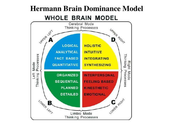 Hermann Brain Dominance Model