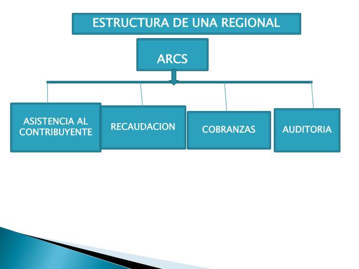 ESTRUCTURA DE UNA REGIONAL