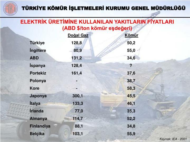 ELEKTRİK ÜRETİMİNE KULLANILAN YAKITLARIN FİYATLARI (ABD $/ton kömür eşdeğeri)