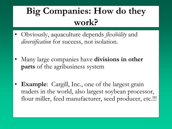 Big Companies: How do they work?