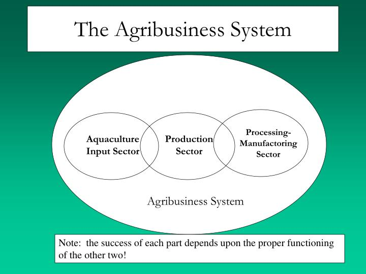 The Agribusiness System