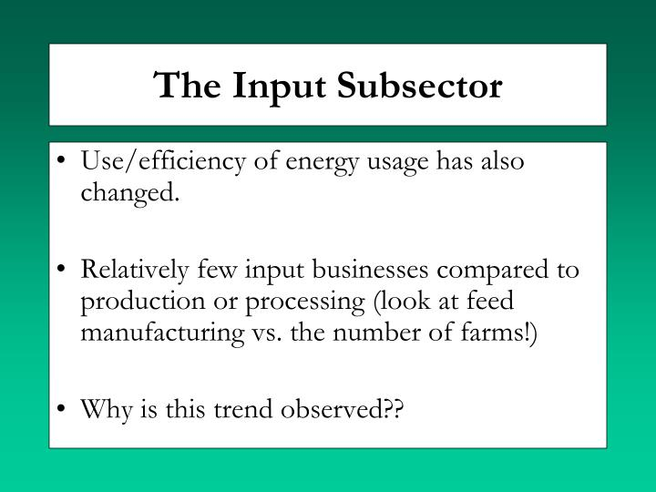 The Input Subsector
