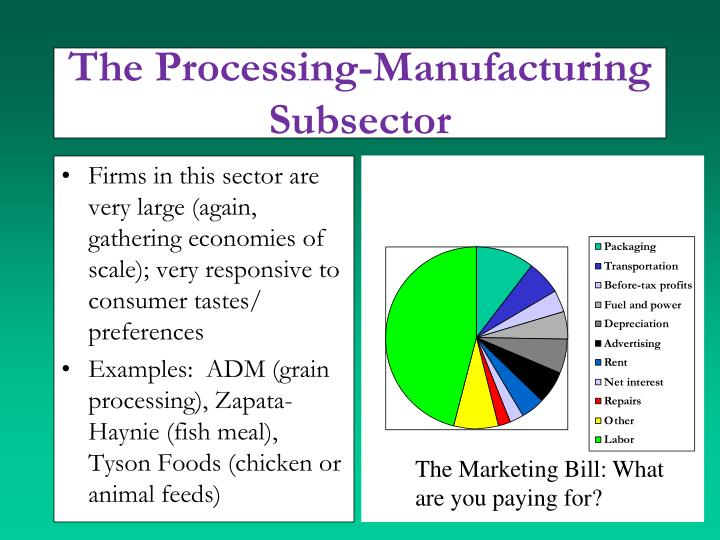 The Processing-Manufacturing
