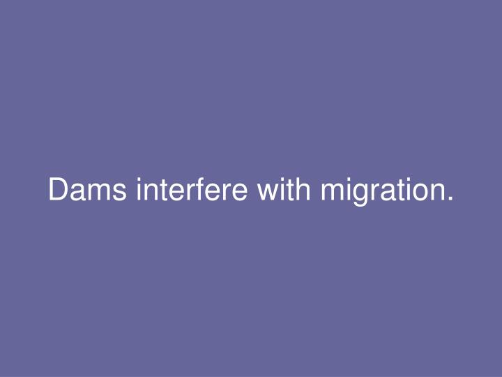 Dams interfere with migration.