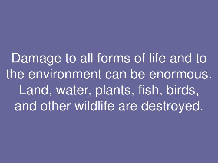 Damage to all forms of life and to the environment can be enormous.  Land, water, plants, fish, birds,
