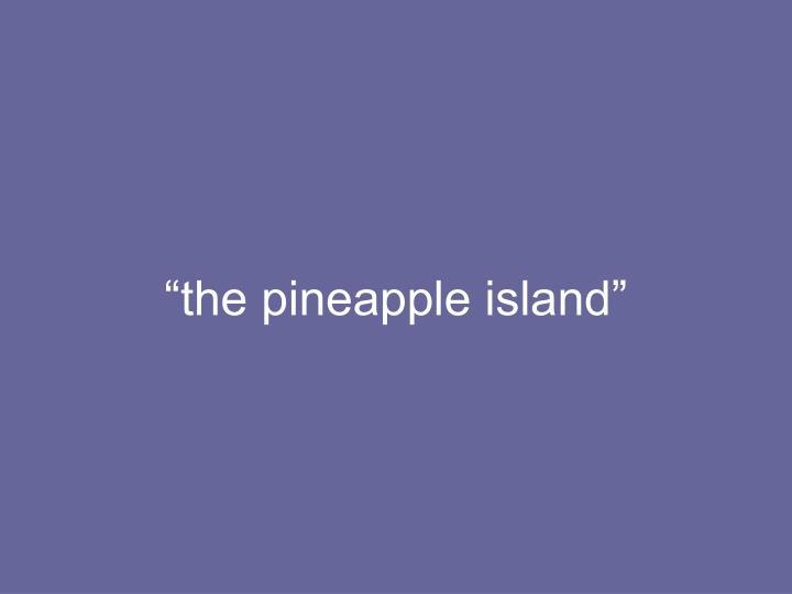 """the pineapple island"""