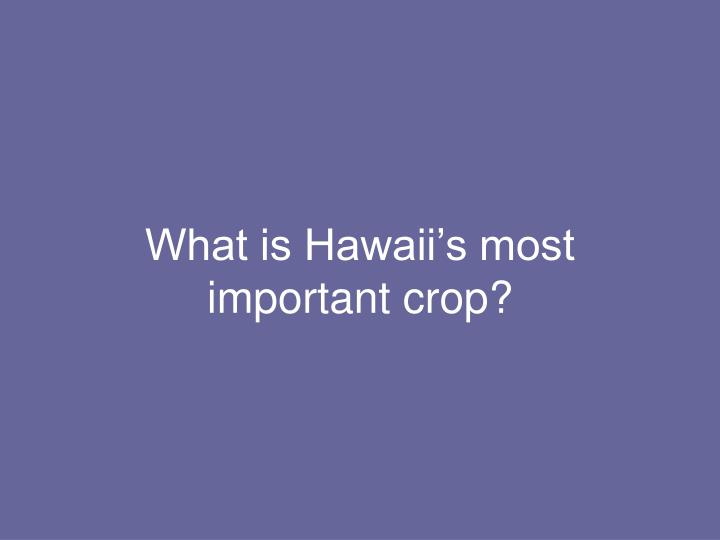 What is Hawaii's most