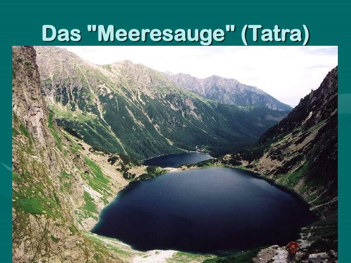 "Das ""Meeresauge"" (Tatra)"