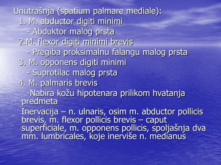 Unutrašnja (spatium palmare mediale):