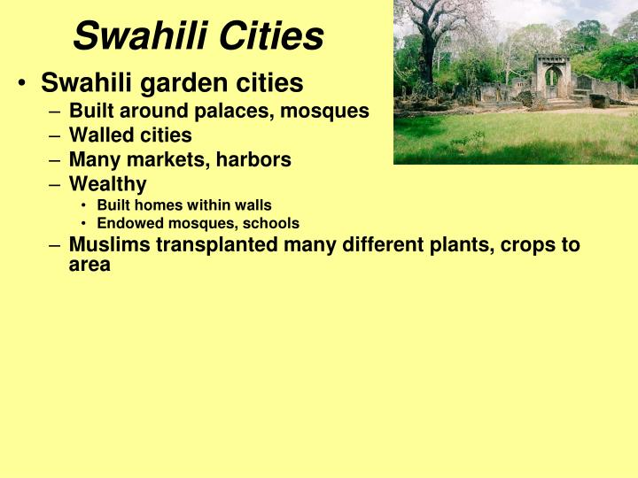 Swahili Cities