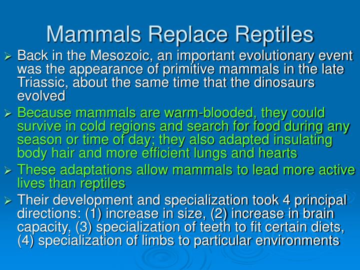 Mammals Replace Reptiles