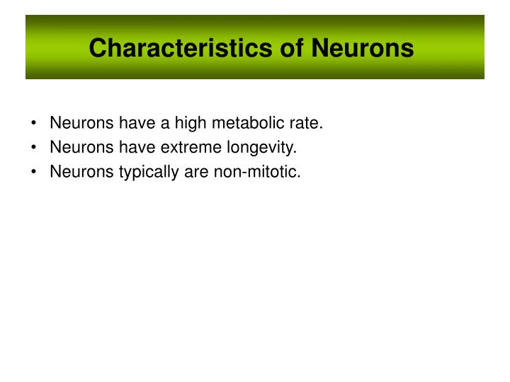 Characteristics of Neurons