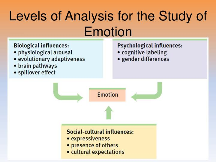Levels of Analysis for the Study of Emotion