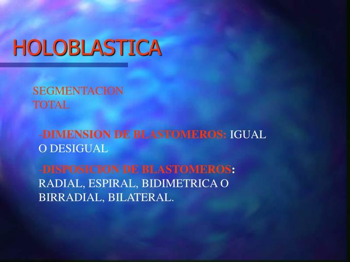HOLOBLASTICA