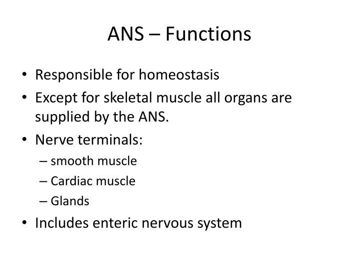 ANS – Functions