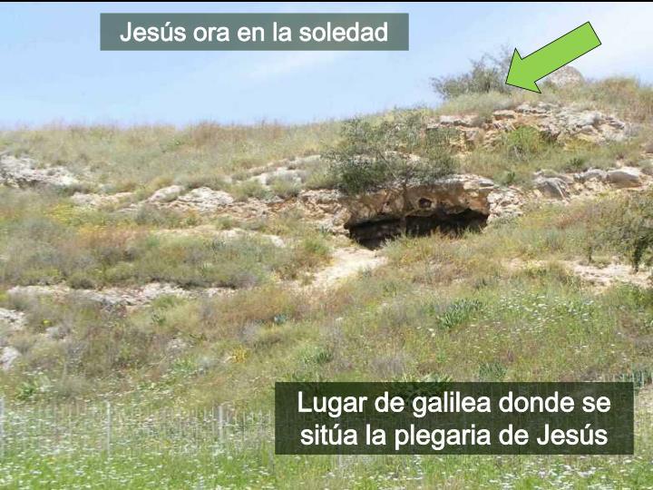 Jesús ora en la soledad