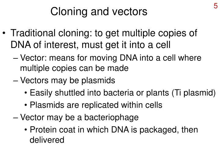 Cloning and vectors