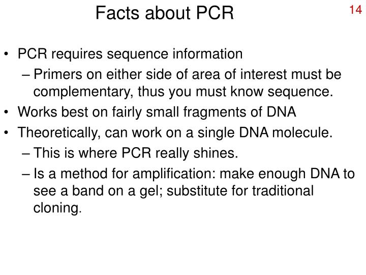Facts about PCR