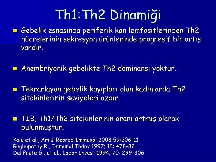 Th1:Th2 Dinamiği