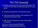 th1 th2 dinami i1