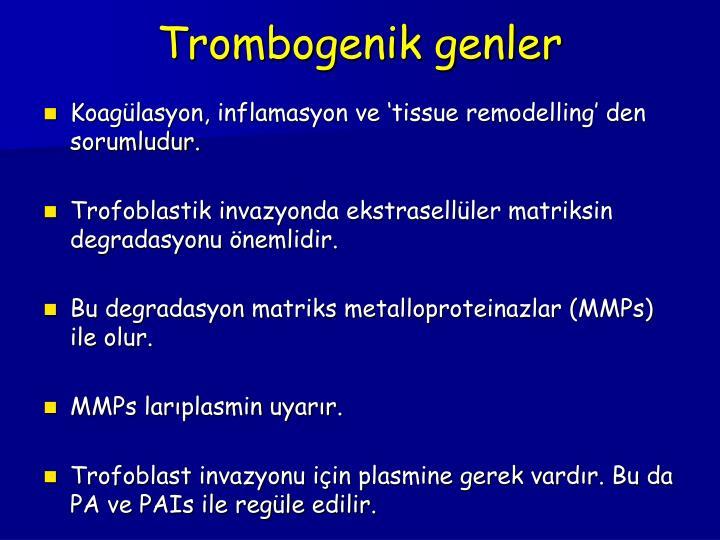 Trombogenik genler
