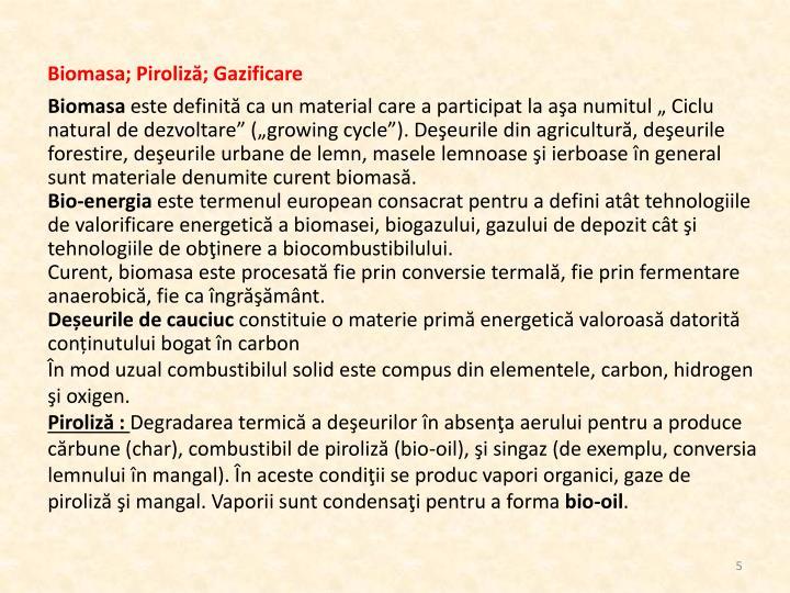 Biomasa; Piroliză; Gazificare