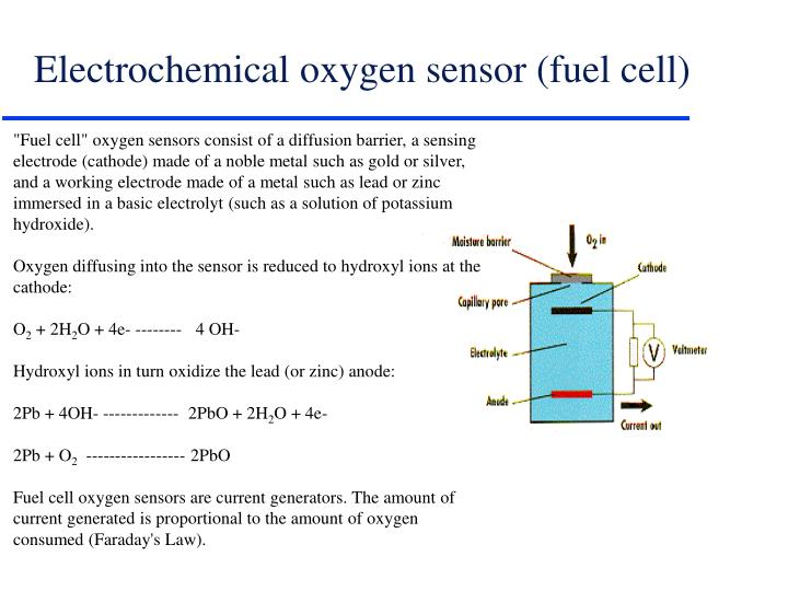 Electrochemical oxygen sensor (fuel cell)