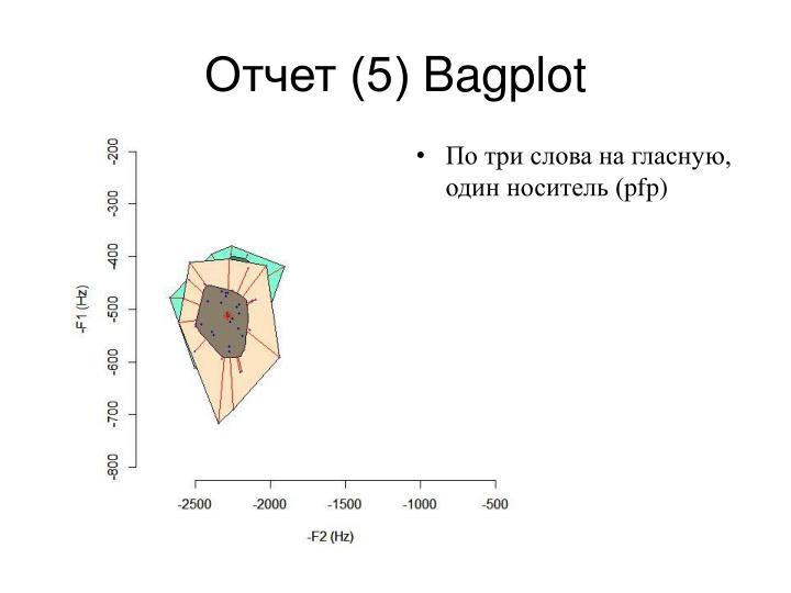 Отчет (5)