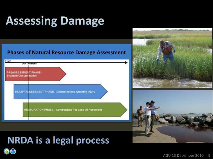 Assessing Damage