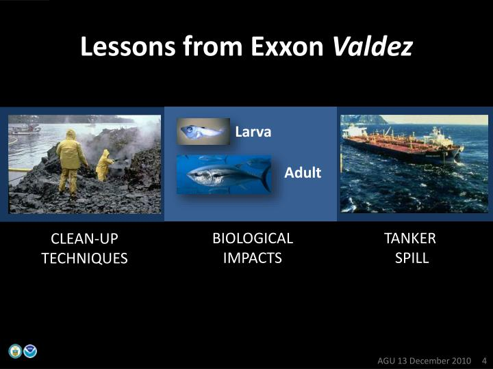 Lessons from Exxon