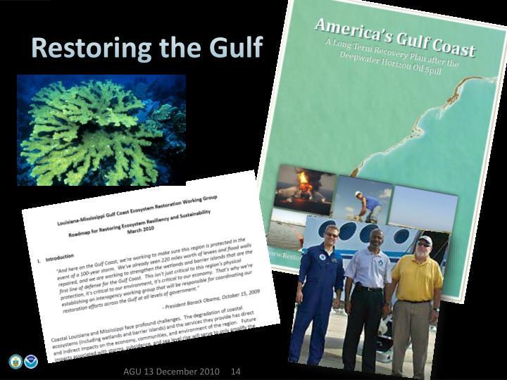 Restoring the Gulf