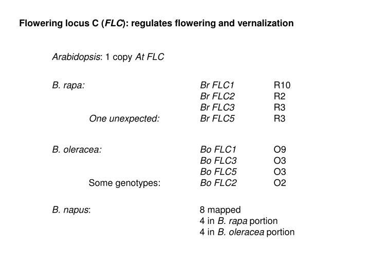 Flowering locus C (