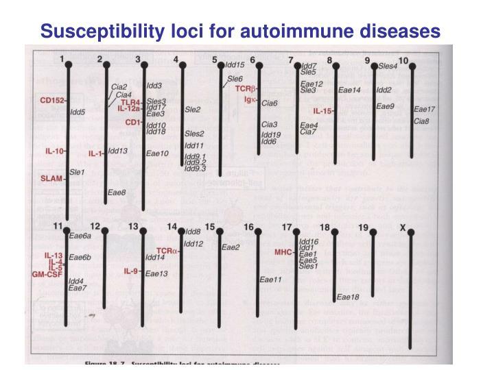 Susceptibility loci for autoimmune diseases