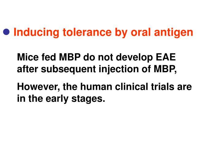 Inducing tolerance by oral antigen